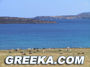 This site is a paros guide for everyone looking to organise best vacations ever.